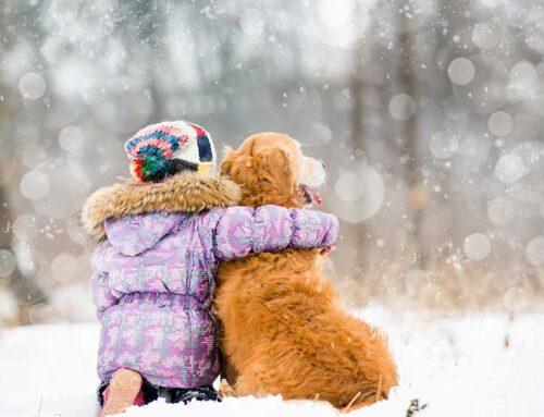 """""""El amor por los animales eleva el nivel cultural del pueblo"""""""